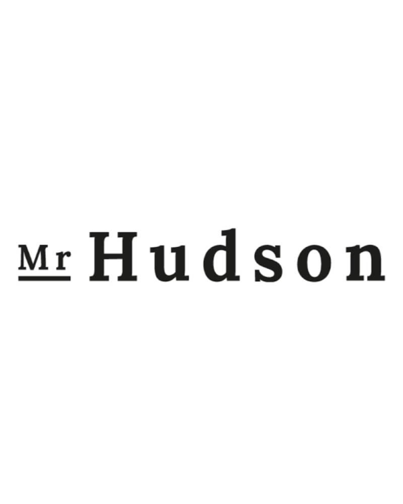 mr-hudson